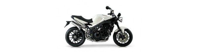 Speed Triple 1050 (04-10)
